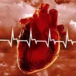 Как предотвратить сердечные недуги