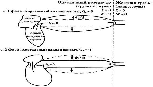 elastichnyj-rezervuar