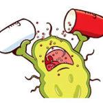 Устойчивость бактерий к антибиотикам
