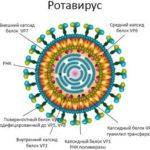 Ротавирусная инфекция причины, симптомы, лечение